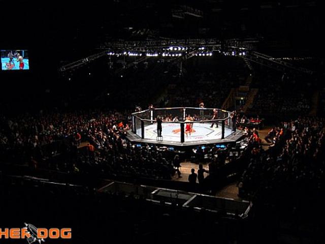 Ufc Announces April 2016 Event At Madison Square Garden Despite New York Mma Ban
